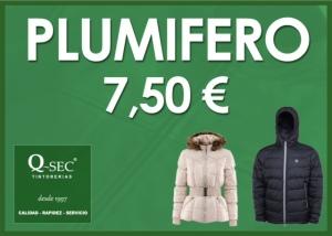 Limpieza de plumíferos a 7,50€